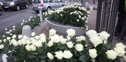 Gdynia żegna Annę Przybylską tysiącami róż