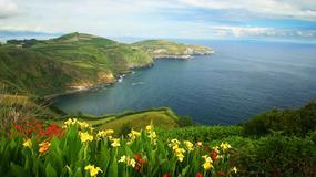 Rajskie ogrody pośrodku oceanu