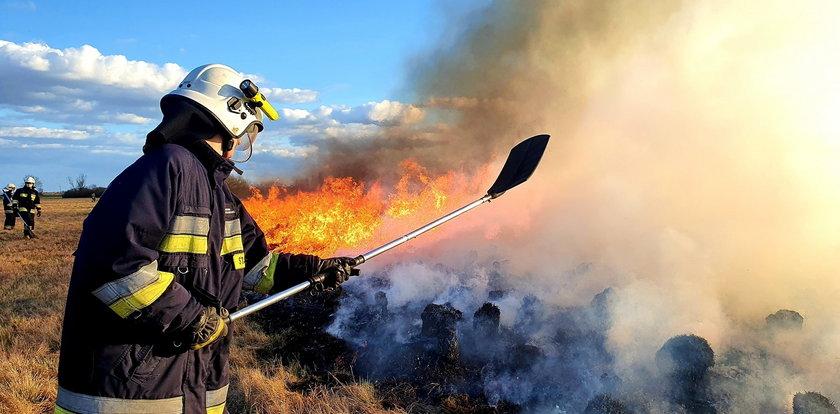 Pożar w Biebrzańskim Parku Narodowym. Nowe fakty