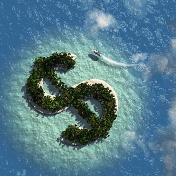 Firmy widzą szanse za oceanem
