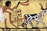 Zemljoradnja je na Bliskom istoku nastala još pre oko 10.000 godina