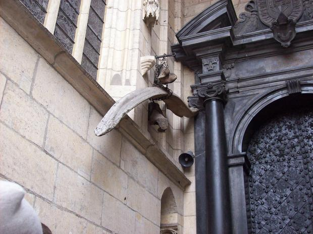 Kości smoka na Wawelu