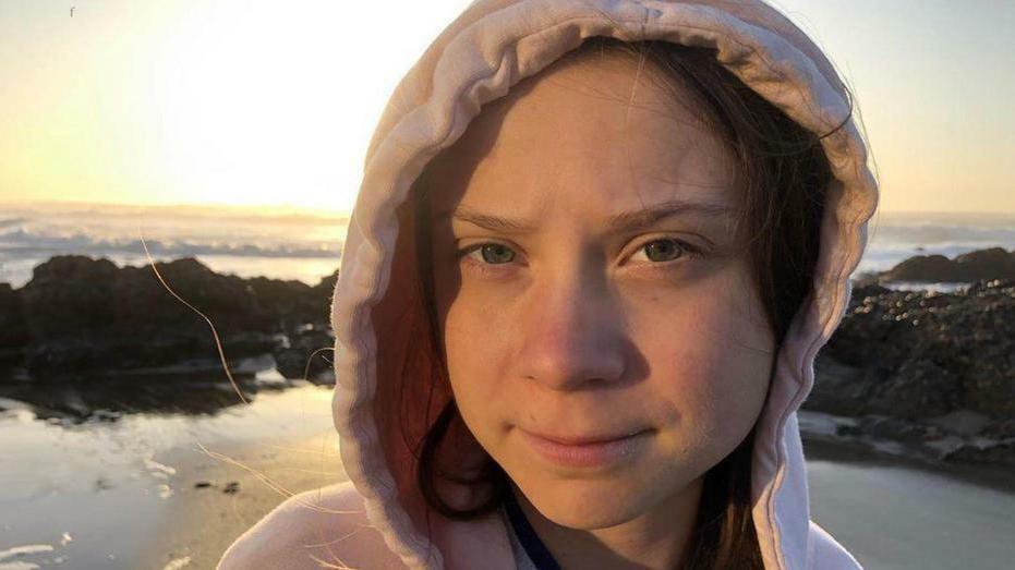 Ezt nem hiszi el: Így ismerték el a svédek Greta Thunberg munkáját - fotó