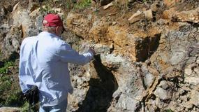 Naukowcy znaleźli dowody na istnienie pradawnego kontynentu