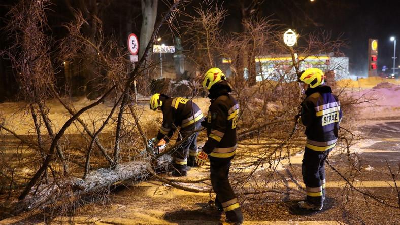 Strażacy usuwają powalone drzewo w Zakopanem