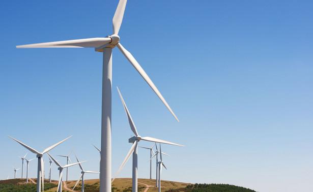 Zgodnie z postulatami AfD na obszarach lasów, parków przyrodniczych i rezerwatów przyrody nie powinno się budować wiatraków