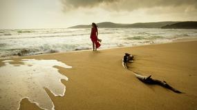 Najczystsze kąpieliska Europy 2012 - raport UE