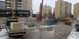 Czy stację metra Płocka ozdobi... mamut?