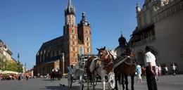 Górale stają w obronie krakowskich dorożkarzy