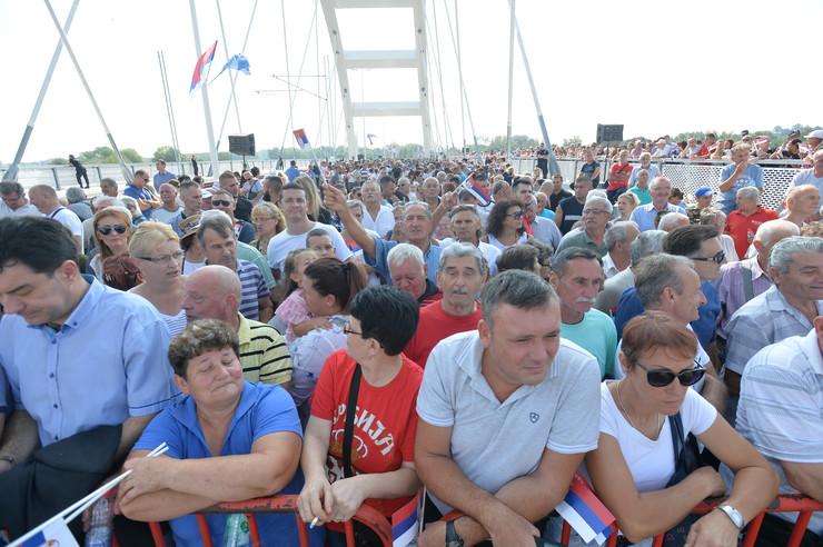 Žeželjev most, Novi Sad