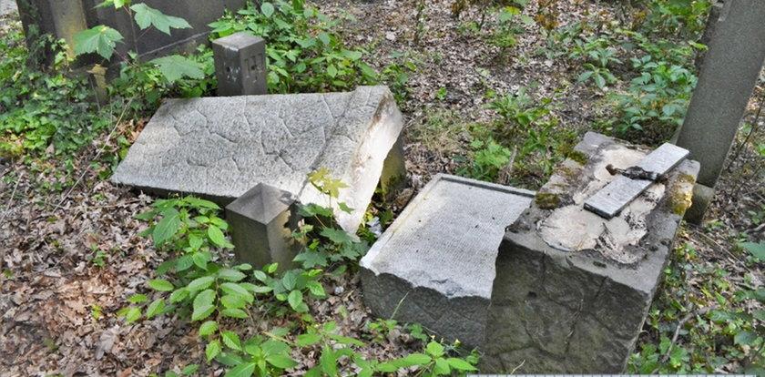 Horror we Wrocławiu! Banda dzieci pohańbiła zmarłych! Czy są jeszcze jakieś granice?!