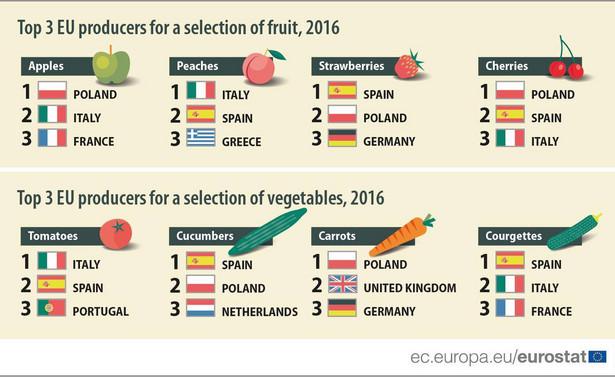 Najwięksi producenci owoców i warzyw w UE, źródło: Eurostat