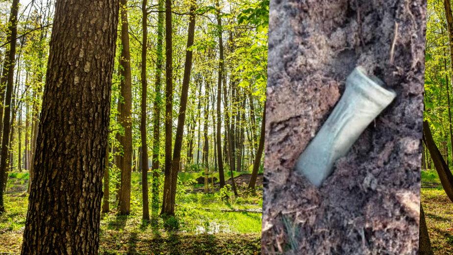 Znaleziona siekierka tulejkowata ma ok. 3,4 tys. lat