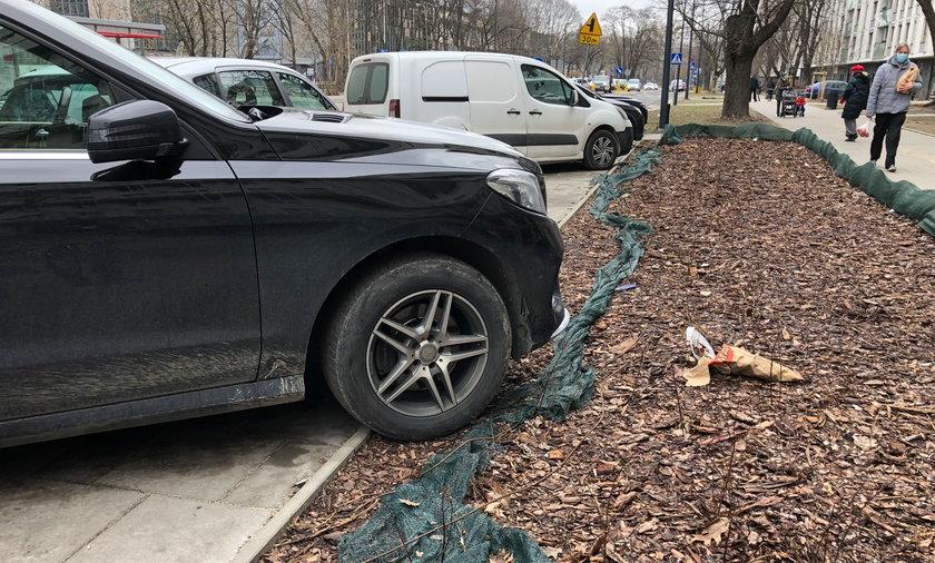 Auta rozjeżdżają trawniki na Żoliborzu