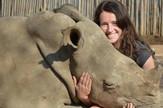 beba nosorog džejmi trejnor