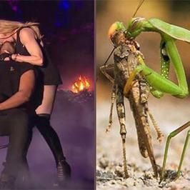 Madonna całuje Drake'a - najlepsze memy!