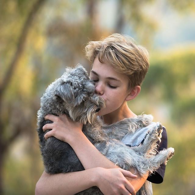 Kontakt sa psima dobar za imunitet
