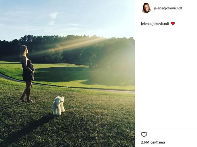 Jelena Đoković pokazala STOMAČIĆ: Ovo je jedna od njenih najlepših slika!