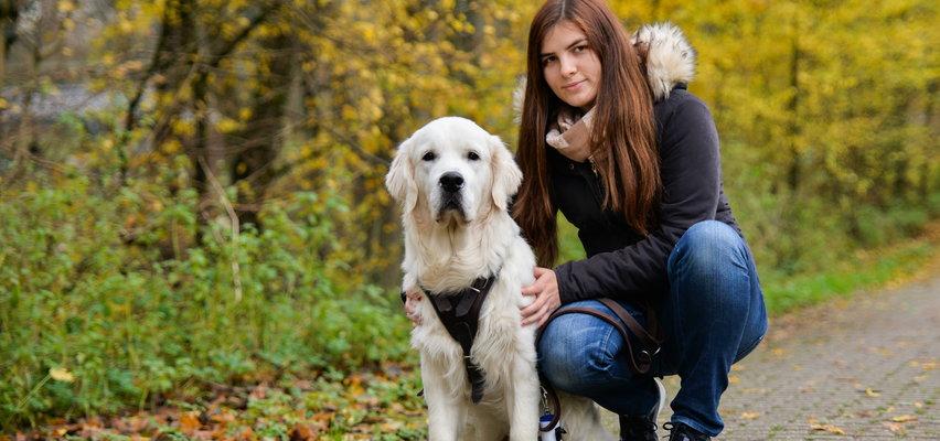 Czy pies zawsze musi być na smyczy? O co chodzi w nowych zmianach w prawie? Wyjaśnia prawnik