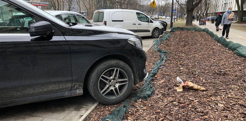Mieszkańcy ulicy Rydygiera apelują: Nie niszczcie nam trawników