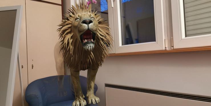 Google 3D životinje