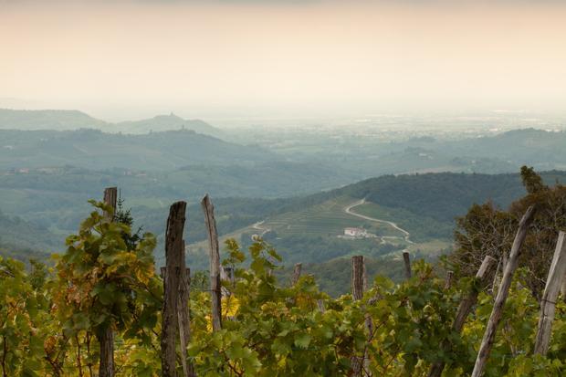 Region Furlanija