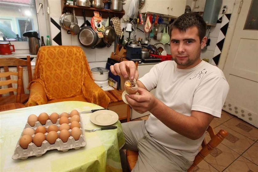jajko, kurczak