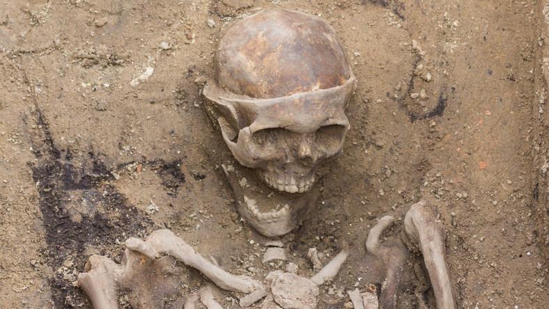 """""""Niewątpliwie jest to pośmiertne odsłonięcie czaszki. Widać nawet w przekroju tejże czaszki, że ją przepiłowano, że prawdopodobnie wydobyto z niej mózg (…) To znalezisko na pewno może być porównywalne z najwcześniejszymi tego typu zabiegami w Polsce, które datowane są na 1613 rok. Można też powiedzieć, że wówczas Poznań był w awangardzie nowoczesnej medycyny' - powiedział PAP w piątek kierujący wykopaliskami dr Marcin Ignaczak."""