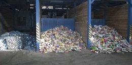 Zwłoki chłopczyka w sortowni śmieci. Wiadomo, jak długo żył