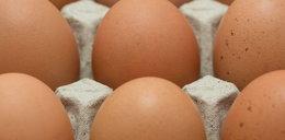 GIS ostrzega przed jajkami z salmonellą!