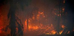Tragiczne skutki pożarów: są ofiary