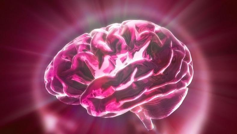 W Polsce co roku udaru mózgu doznaje 75 tysięcy osób