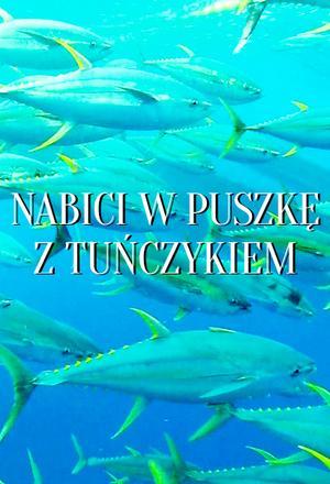 Nabici w puszkę z tuńczykiem