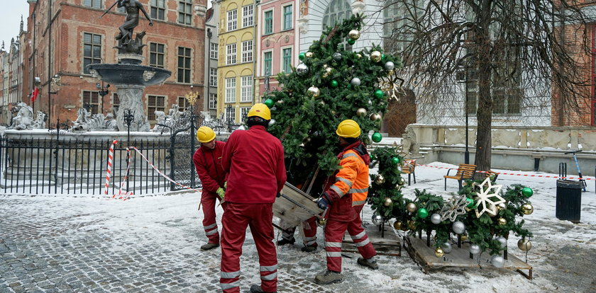 Koniec choinki z Długiego Targu. Co się stało z drzewkiem?