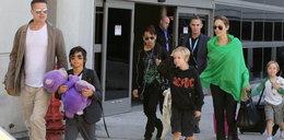 Rozwód Jolie i Pitta. Zrobił dziecko innej?