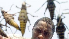 Idris Elba - kadry z filmów
