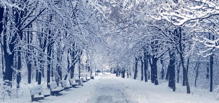 Kiedy spadnie pierwszy śnieg? W górach już się pojawia, a co z pozostałą częścią kraju?