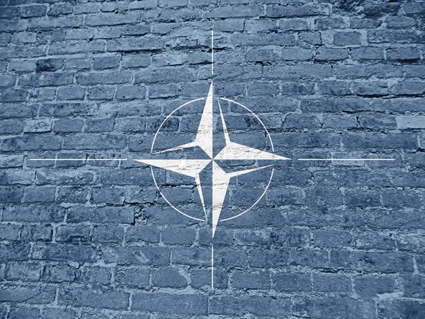 """""""Naszym zdaniem szczególnie istotnym jest, aby ta współpraca przyniosła efekt dodany w sferze rozwoju zdolności wojskowych, szybkiego wykrywania kryzysów i reagowania na nie, a także współpracy z państwami partnerskimi"""" - mówił Błaszczak podczas warszawskiej sesji Zgromadzenia Parlamentarnego NATO."""