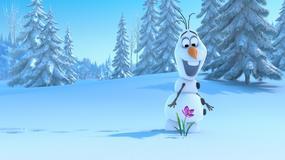 """""""Kraina lodu"""" na szczycie box office w USA"""