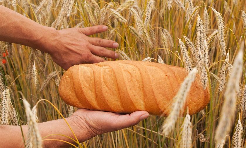 Chleb w dłoniach