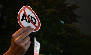 Alternative für Deustchland (AfD) - co to takiego?