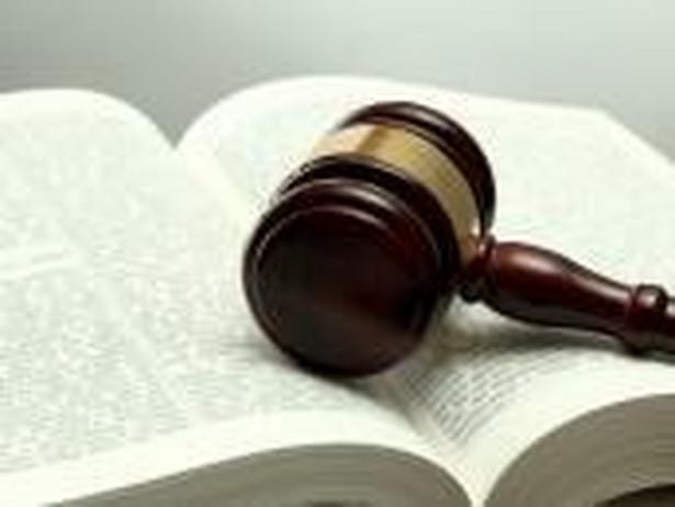 15 wybieranych sędziów wchodzi w skład dwudziestopięcioosobowej KRS