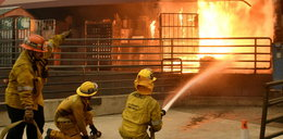 Tragedia gwiazd! Pożar zamienił w zgliszcza ich rezydencje warte miliony dolarów