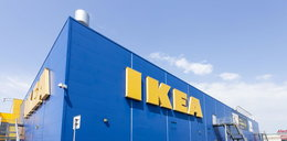 IKEA odkupi używane meble od klientów! Rusza nowy program