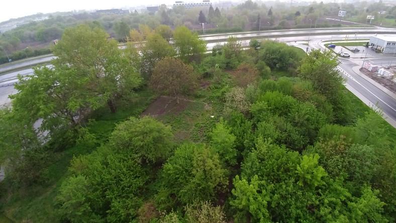 Park W Czyzynach Wyciety Z Mapy Urzad To Nasz Blad Krakow