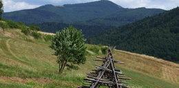 Tragedia w górach. Turysta zmarł na szlaku