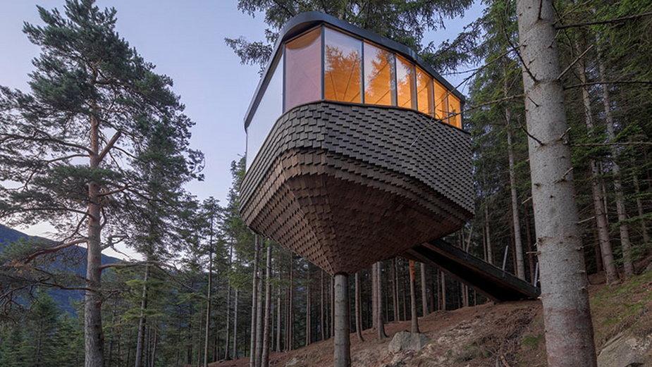 Domki na drzewach w Norwegii. Genialny widok na fiordy
