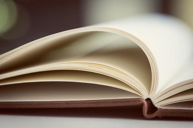 Plagiatem nie będzie dozwolone i zgodne z prawem opracowanie utworu, poprzez np. jego przeróbkę, adaptację, czy tłumaczenie