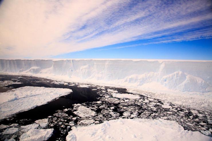 ledeni breg antarktik