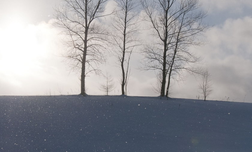 Diamentowy pył na Warmii i Mazurach.